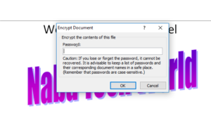 MS Word Document Password